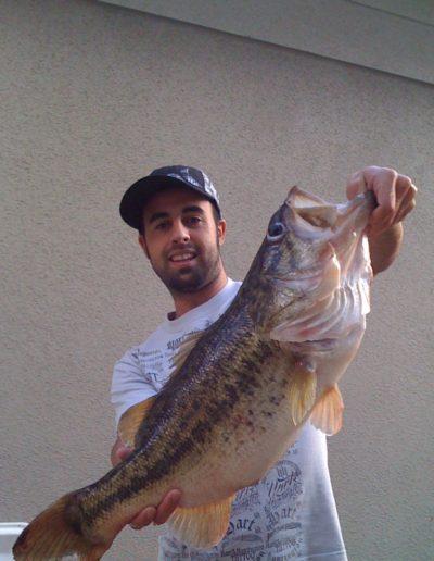 Bass (29)