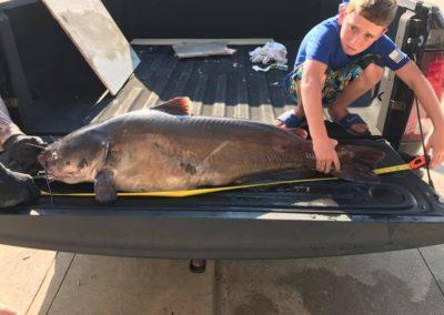 Catfish (14)
