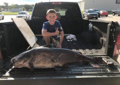 Catfish (15)
