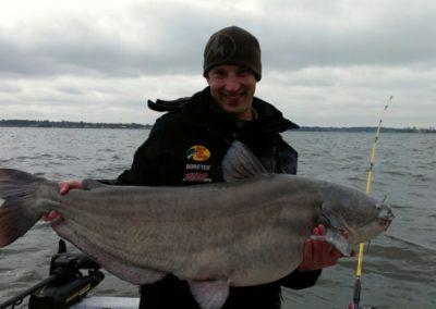 Catfish (40)