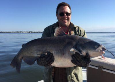 Catfish (50)