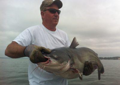 Catfish (58)