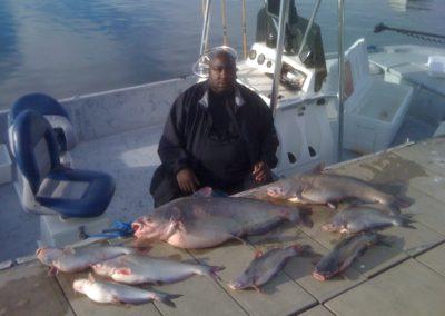 Catfish (6)