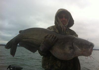 Catfish (64)