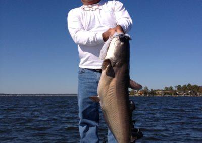 Catfish (78)